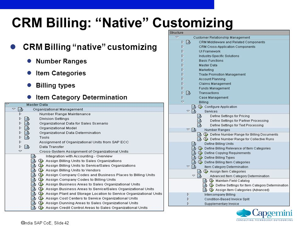 CRM Billing: Native Customizing