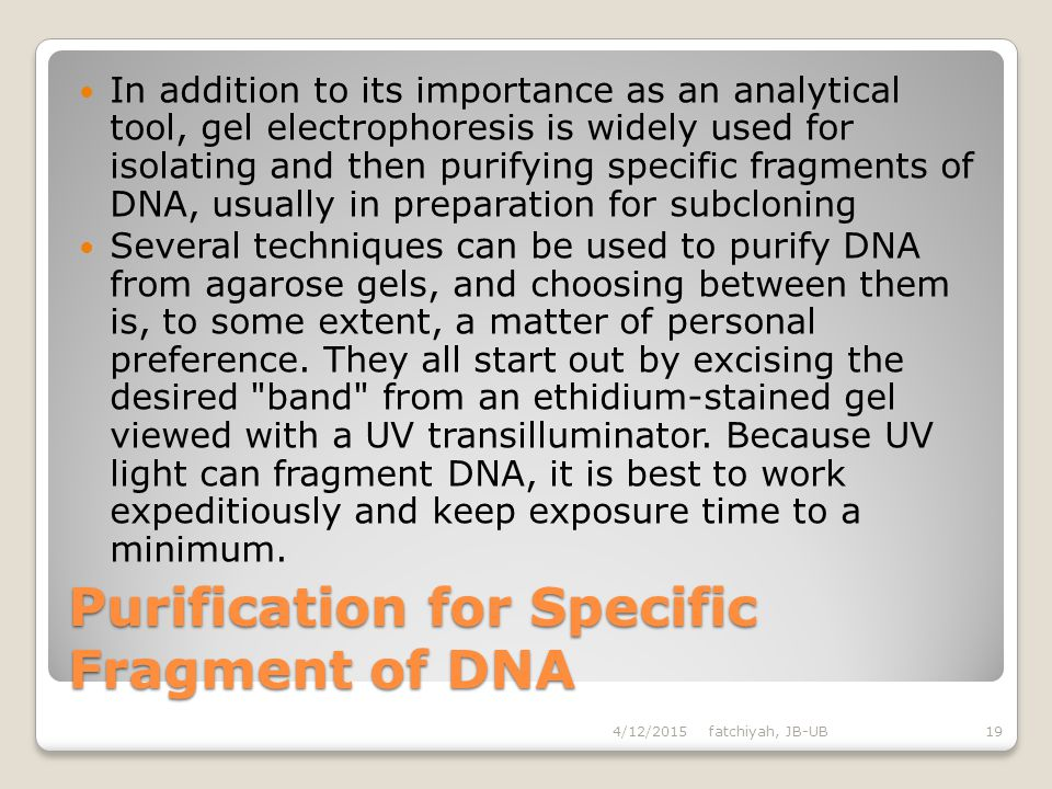 Purification for Specific Fragment of DNA
