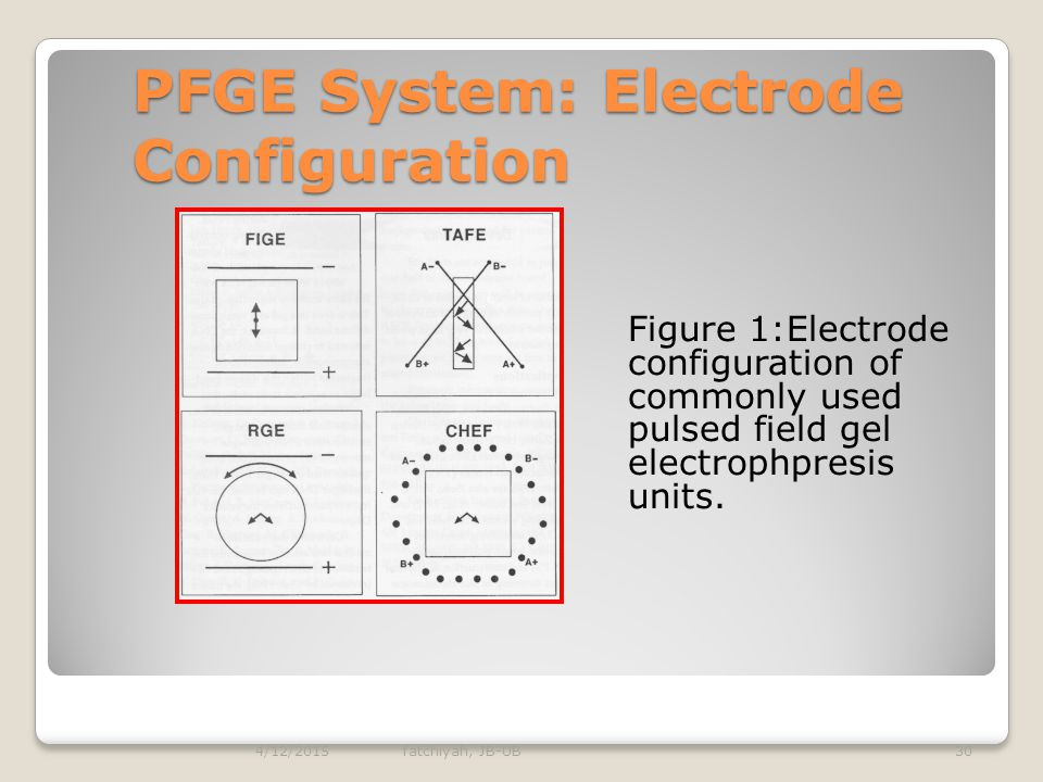 PFGE System: Electrode Configuration