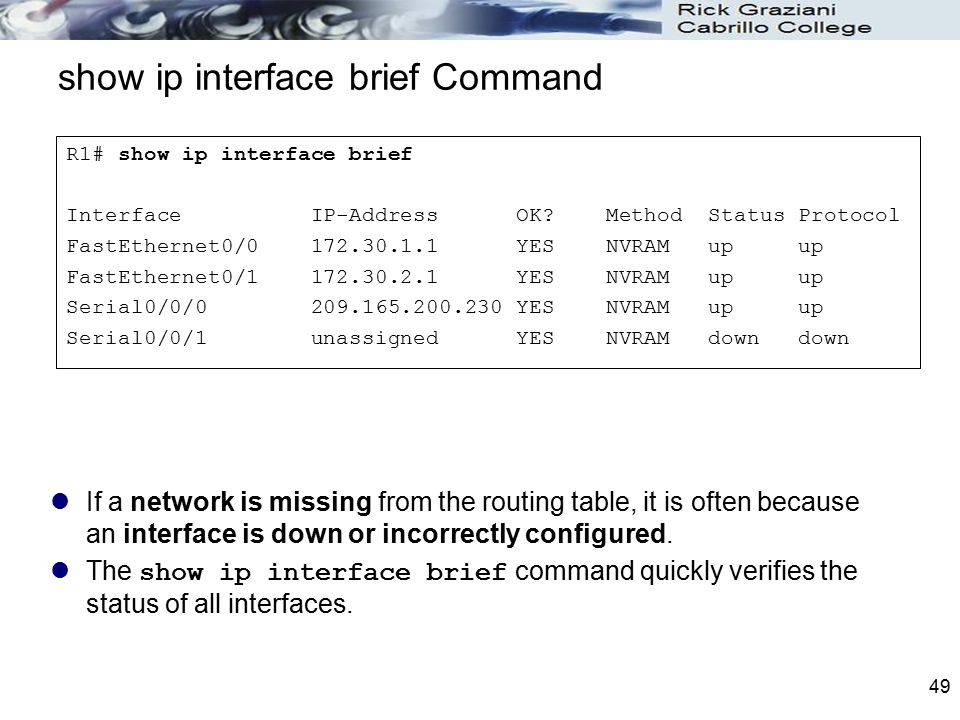 show ip interface brief Command