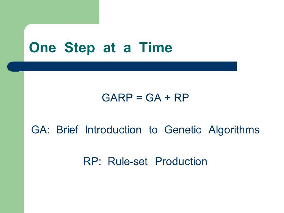 One Step at a Time GARP = GA + RP