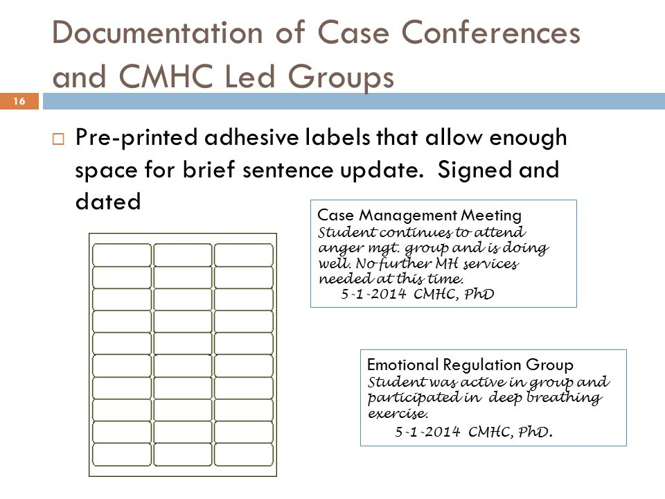 Documentation of Case Conferences and CMHC Led Groups