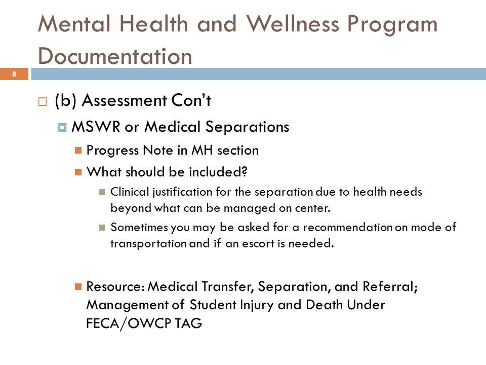 Mental Health and Wellness Program Documentation