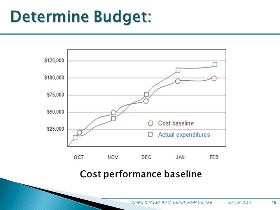 Determine Budget: Cost performance baseline
