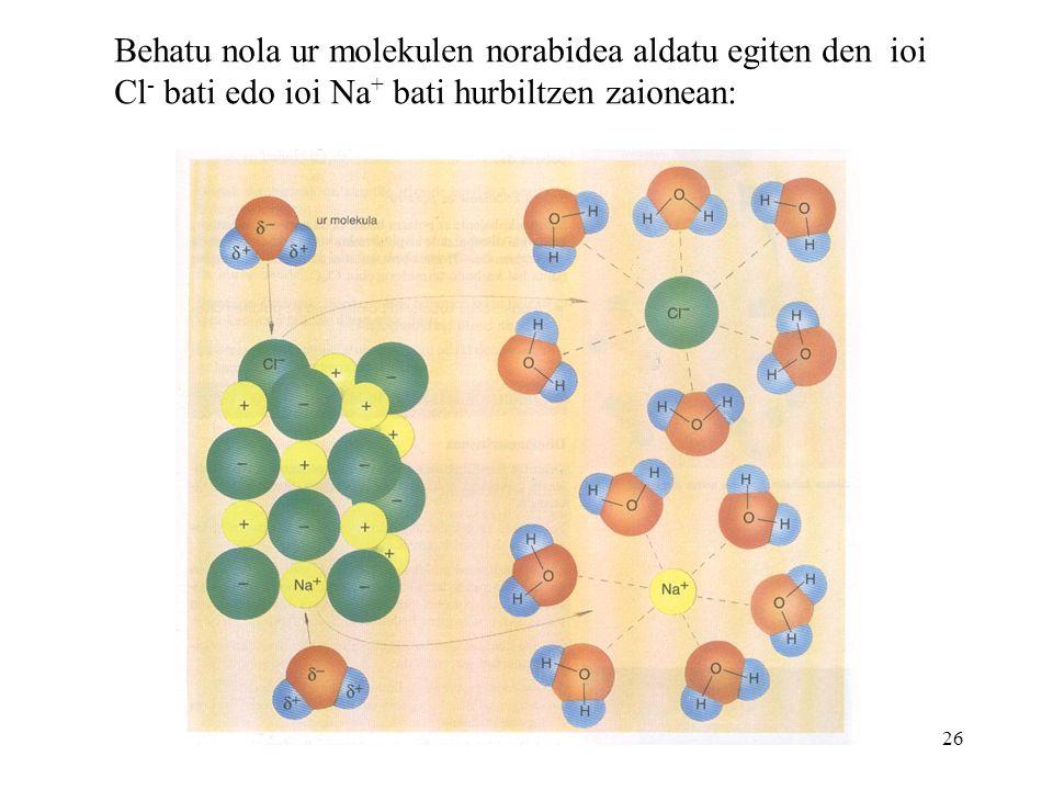 Behatu nola ur molekulen norabidea aldatu egiten den ioi Cl- bati edo ioi Na+ bati hurbiltzen zaionean: