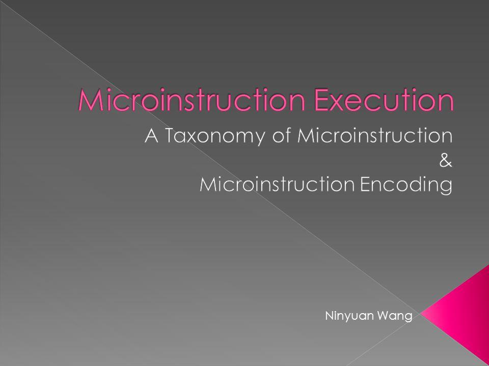 Microinstruction Execution