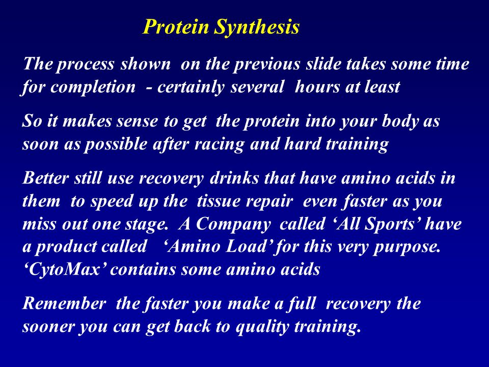 Protein Synthesis The process shown on the previous slide takes some time for completion - certainly several hours at least.