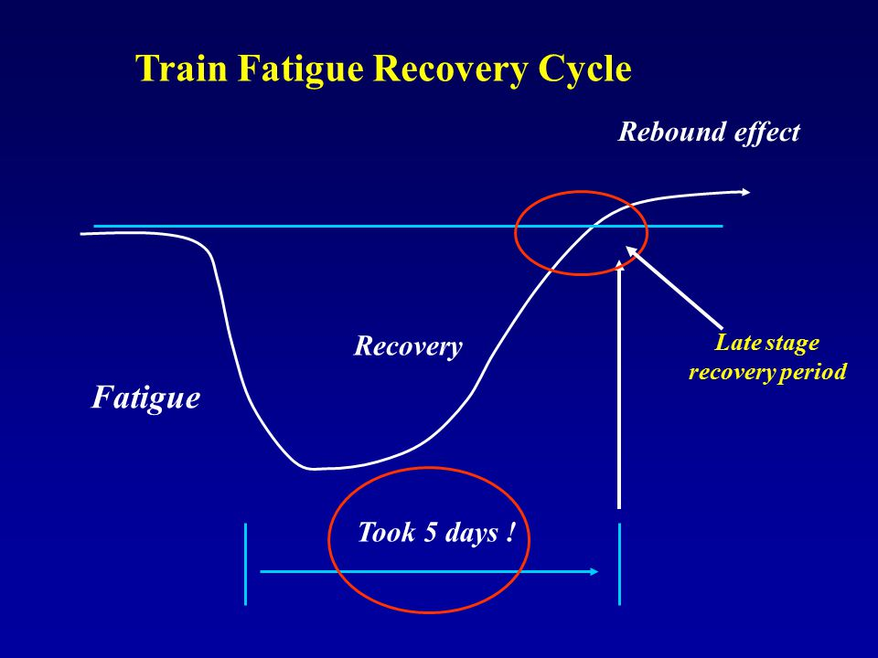 Train Fatigue Recovery Cycle Late stage recovery period