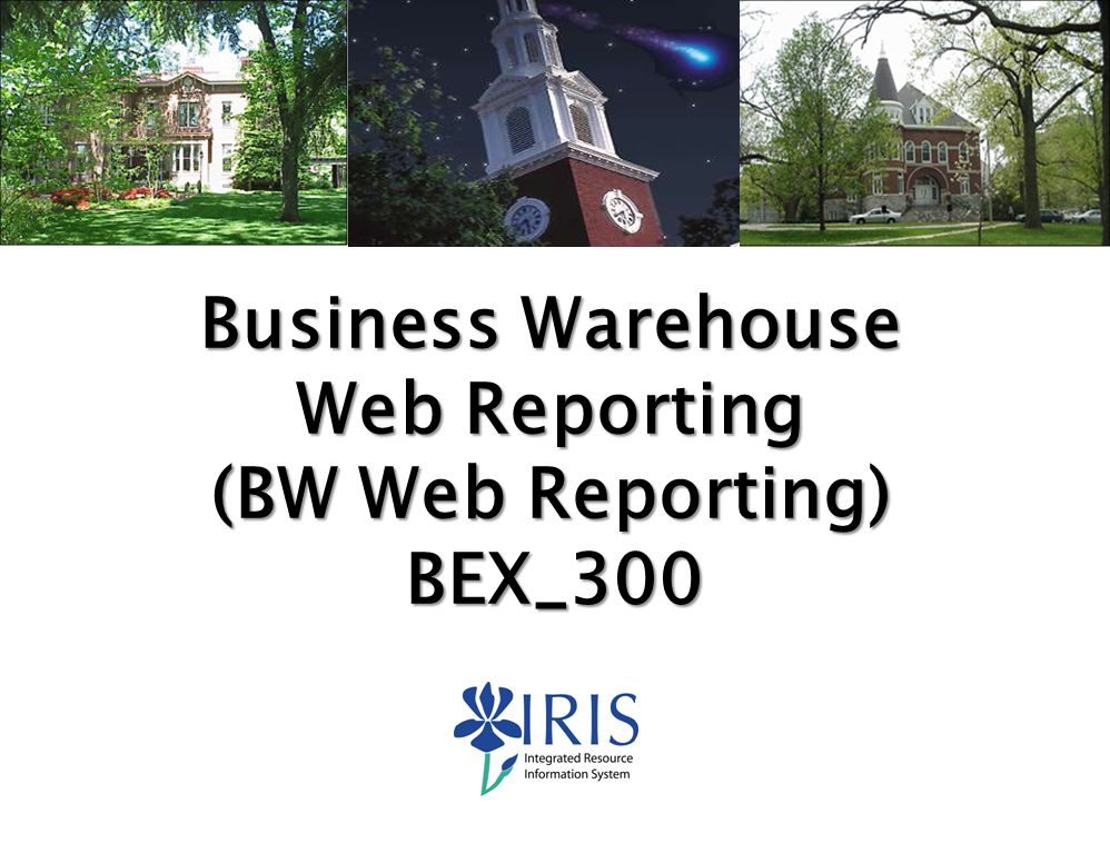 Web Reporting (BW Web Reporting)