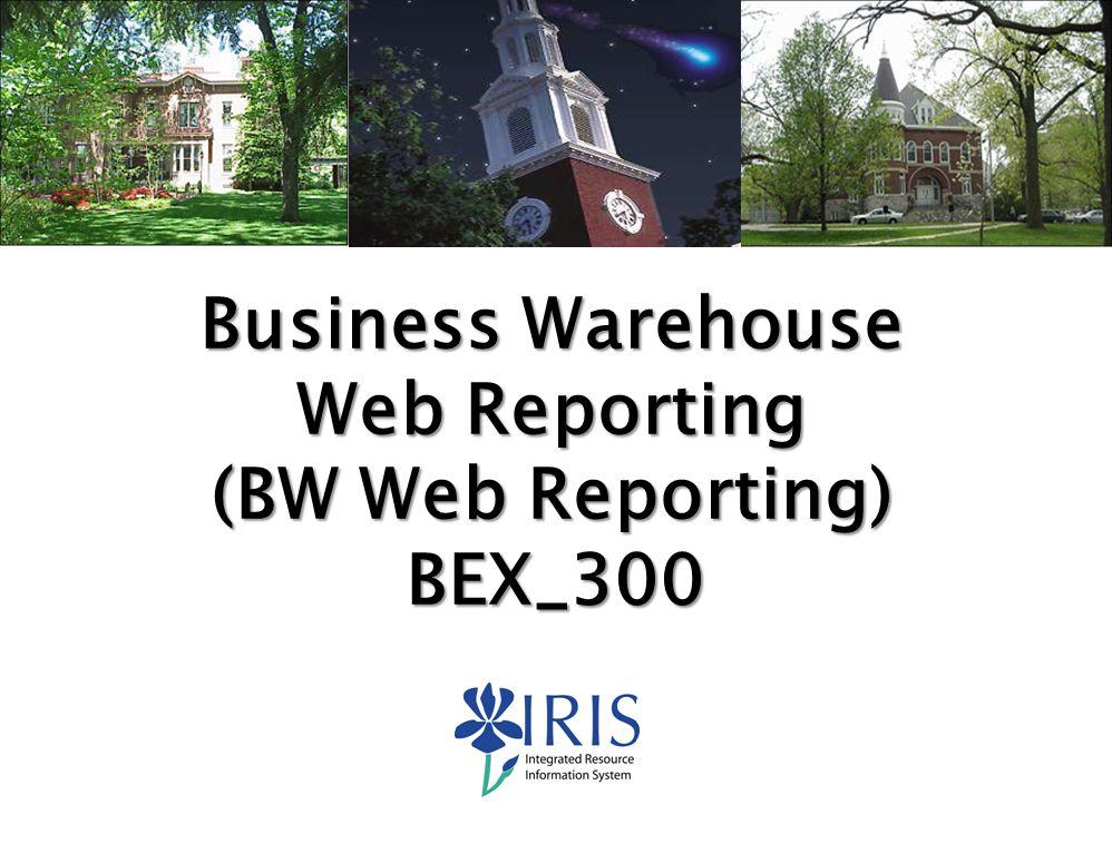 Web Reporting (BW Web Reporting)
