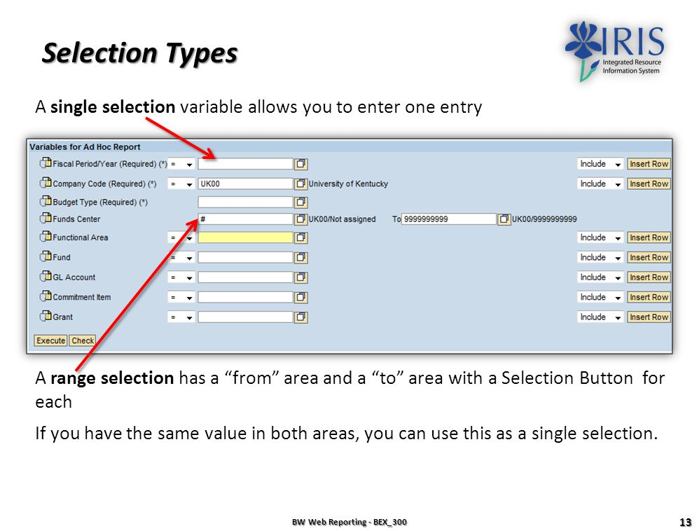 Selection Types A single selection variable allows you to enter one entry.