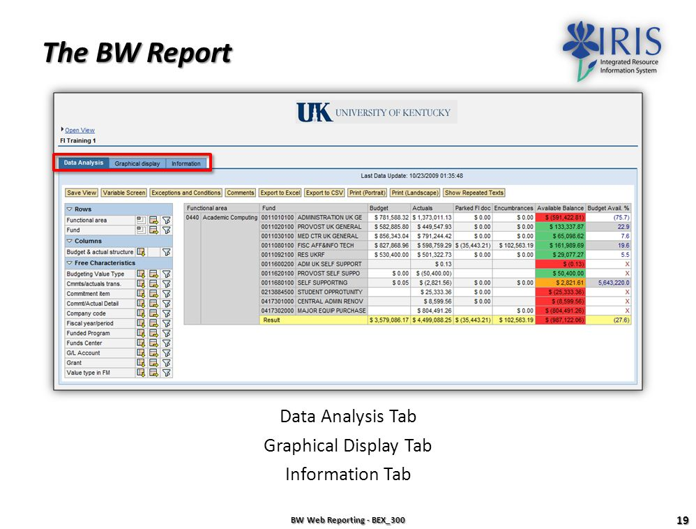 The BW Report Data Analysis Tab Graphical Display Tab Information Tab