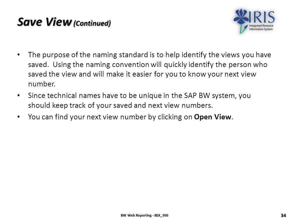 Save View (Continued)