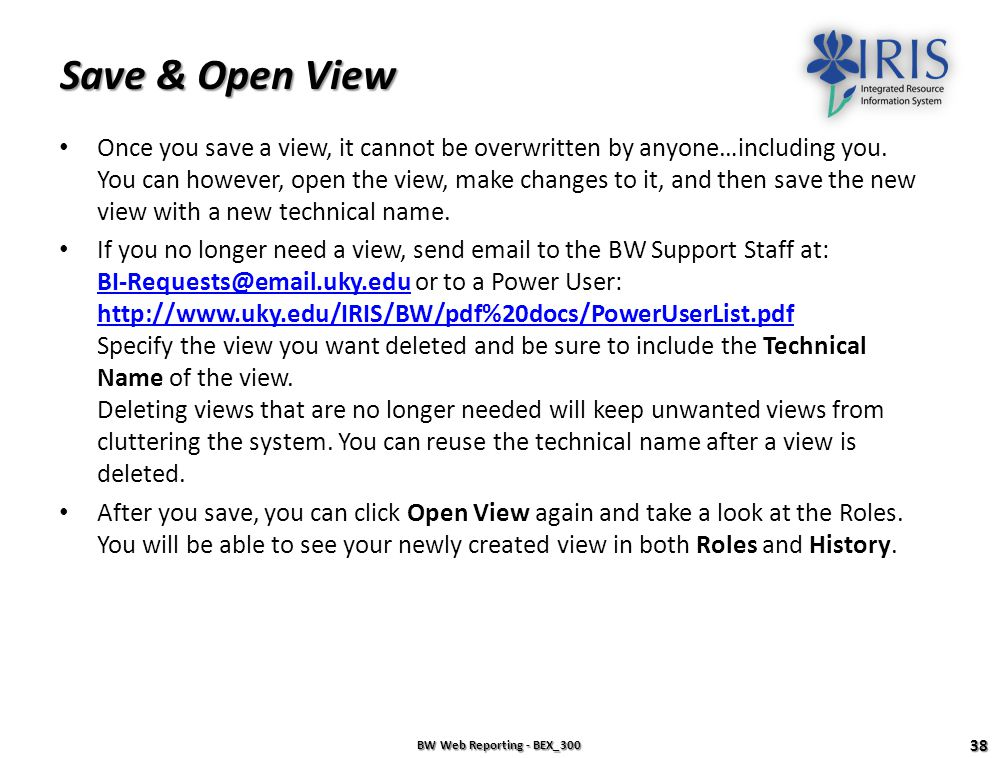 Save & Open View