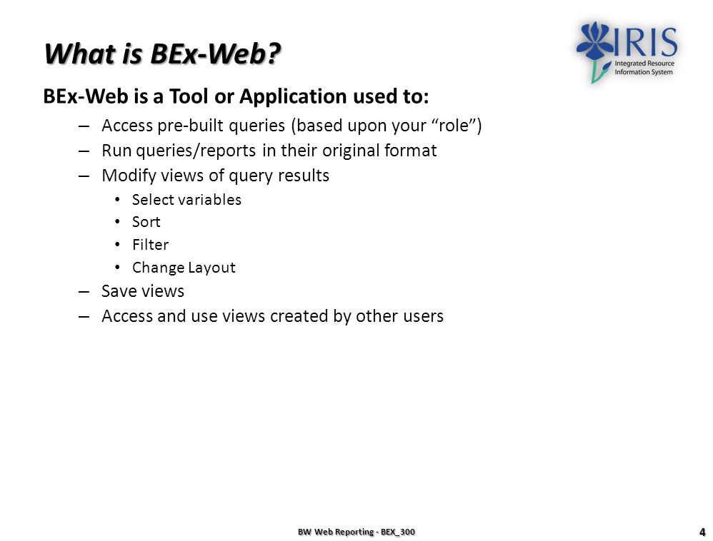 What is BEx-Web BEx-Web is a Tool or Application used to: