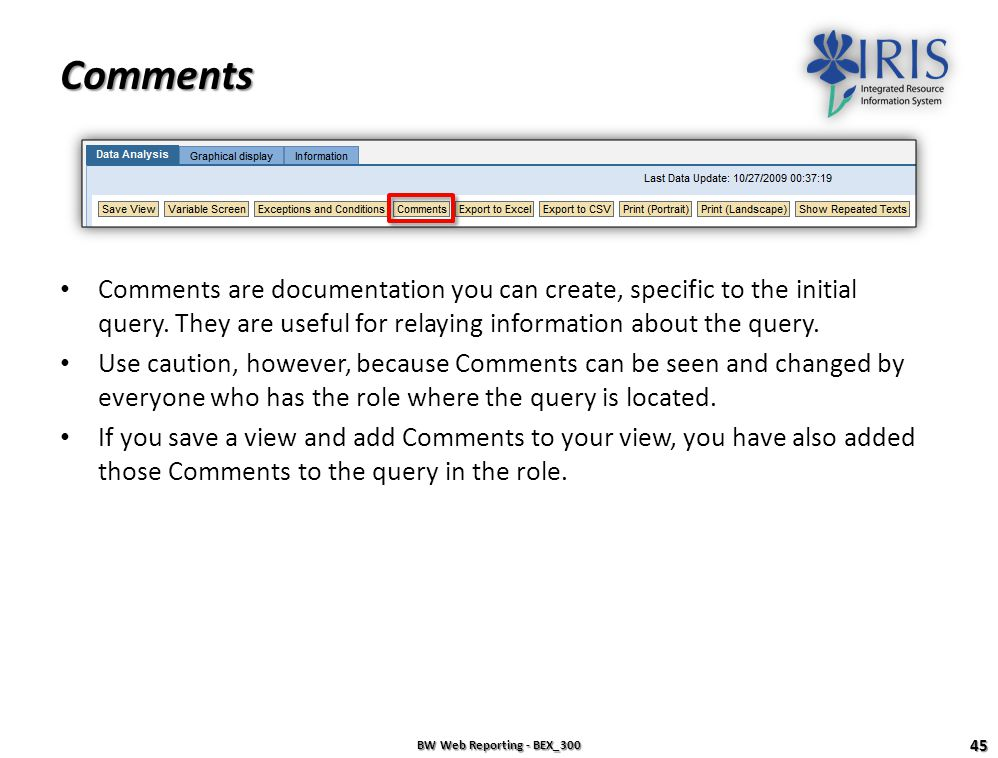 Comments Comments are documentation you can create, specific to the initial query. They are useful for relaying information about the query.