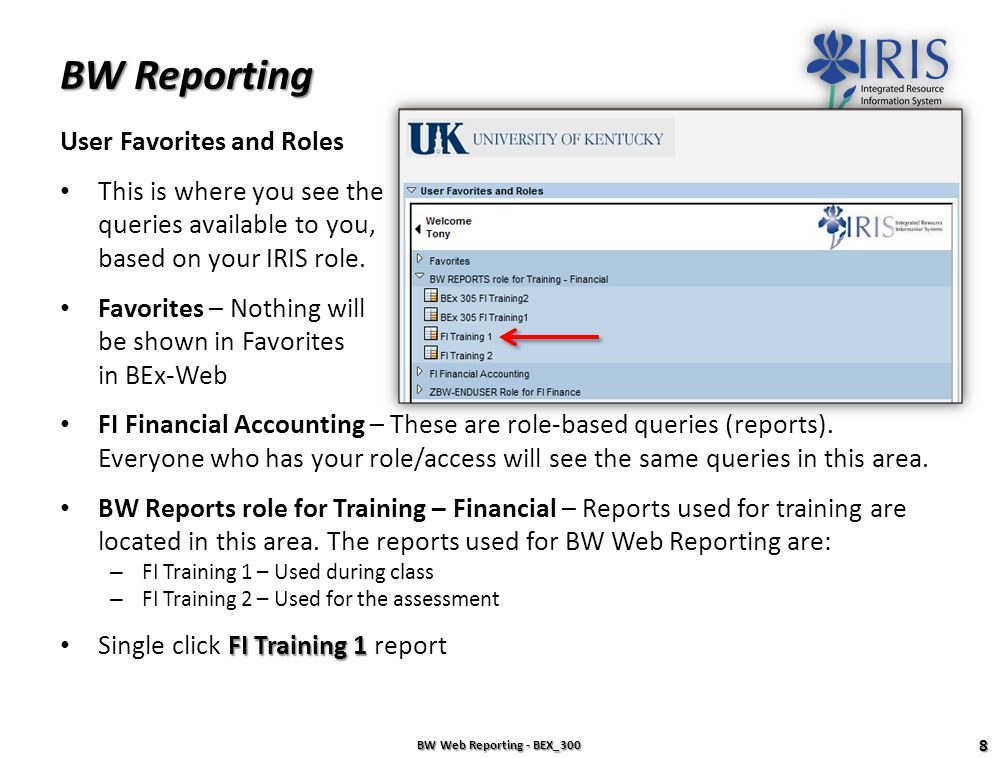 BW Reporting User Favorites and Roles