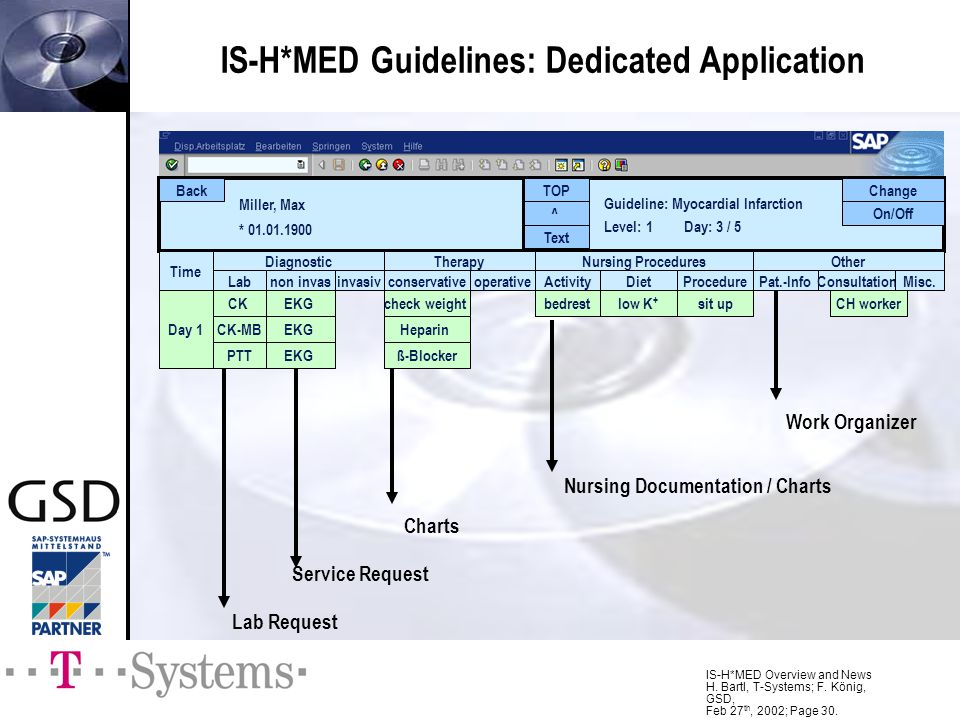IS-H*MED Guidelines: Dedicated Application