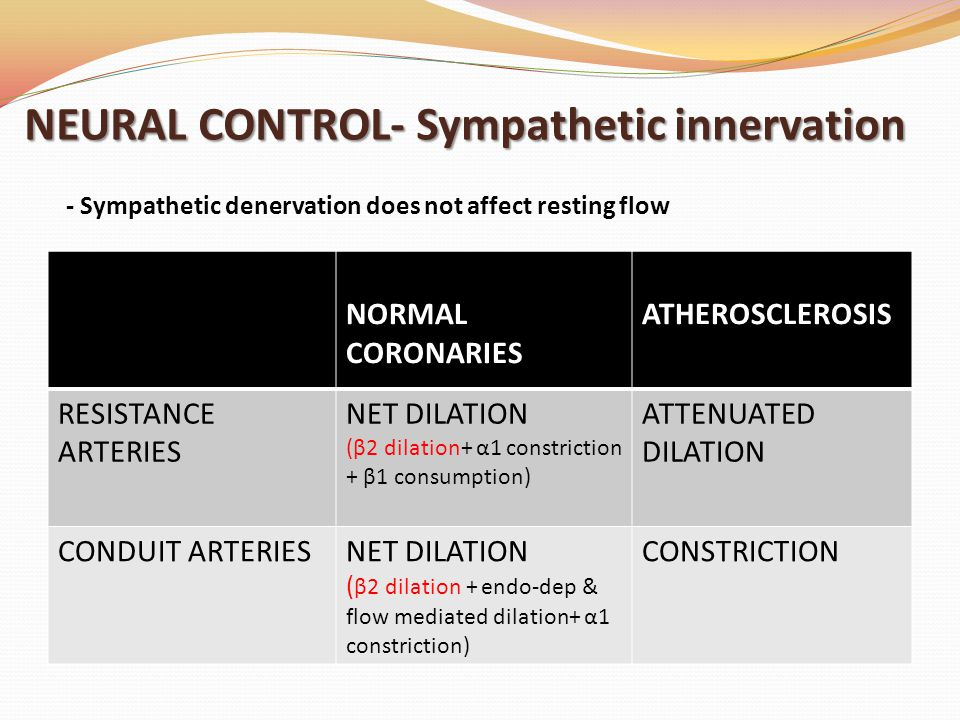 NEURAL CONTROL- Sympathetic innervation