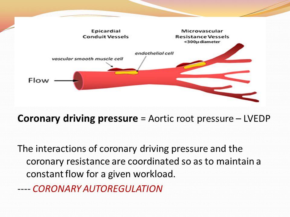 Coronary driving pressure = Aortic root pressure – LVEDP