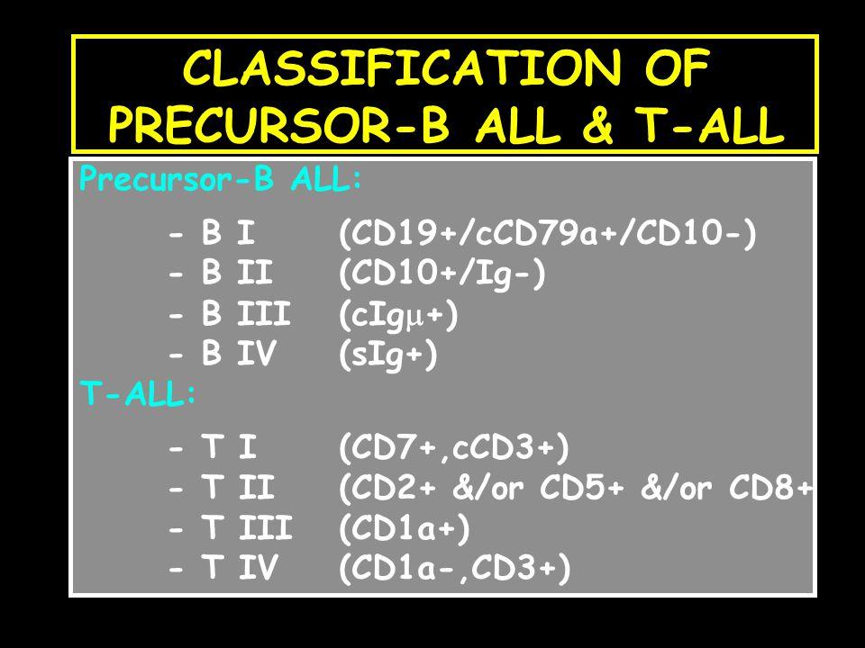 PRECURSOR-B ALL & T-ALL