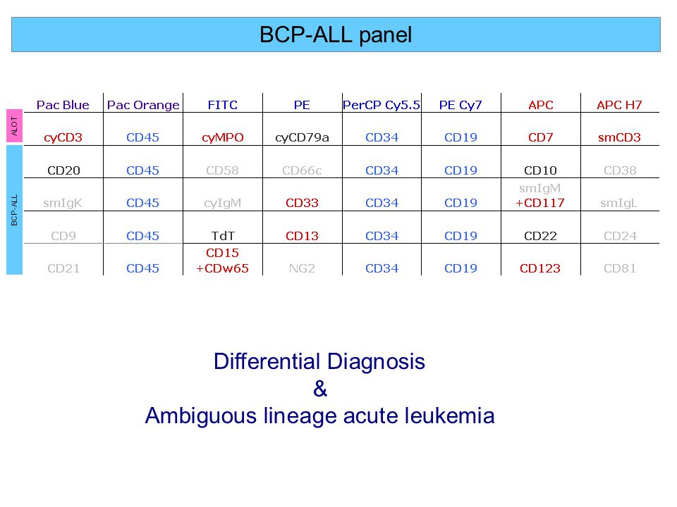 Differential Diagnosis & Ambiguous lineage acute leukemia