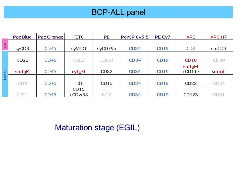 Maturation stage (EGIL)