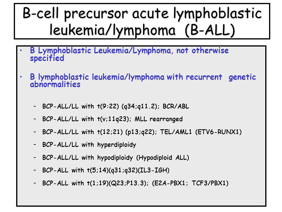 B-cell precursor acute lymphoblastic leukemia/lymphoma (B-ALL)