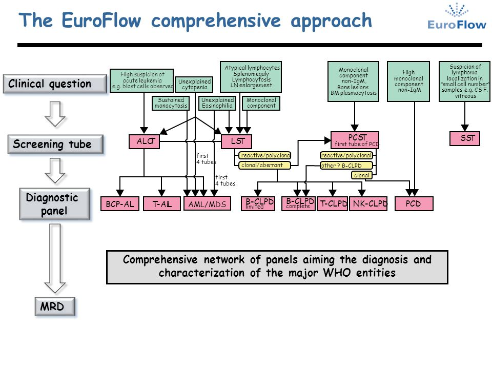 The EuroFlow comprehensive approach