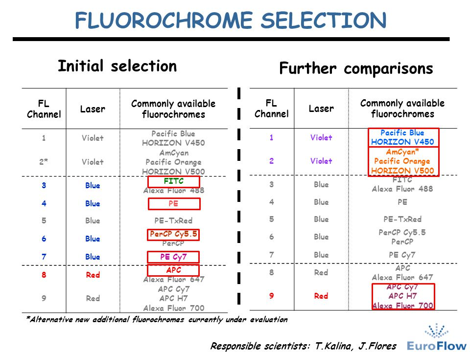 FLUOROCHROME SELECTION
