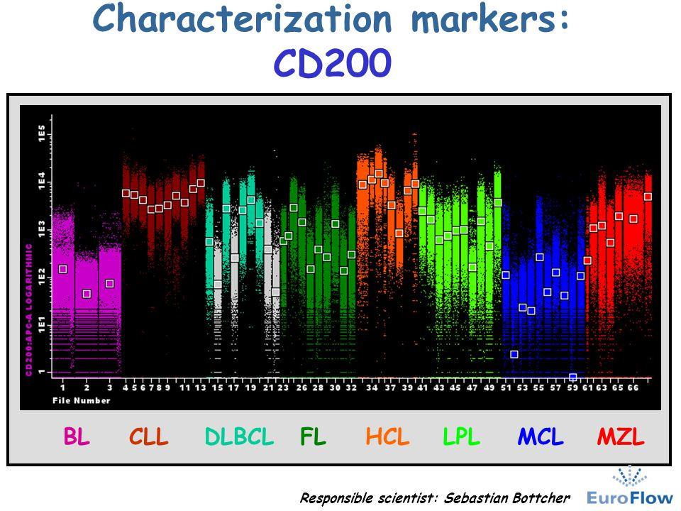 Characterization markers: CD200