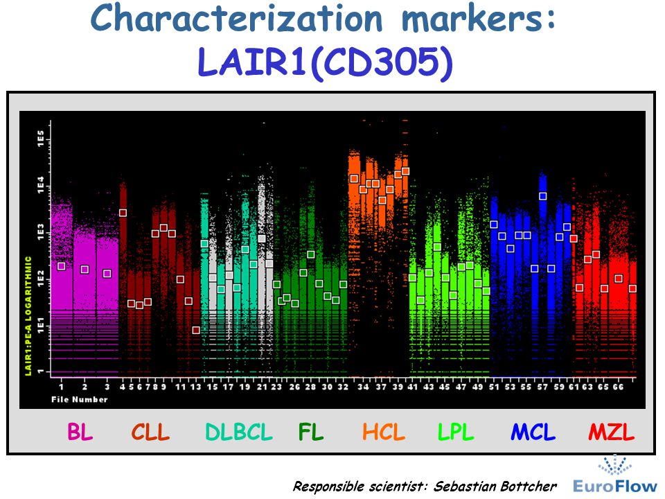 Characterization markers: LAIR1(CD305)