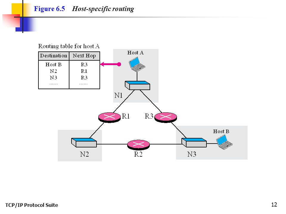 Figure 6.5 Host-specific routing