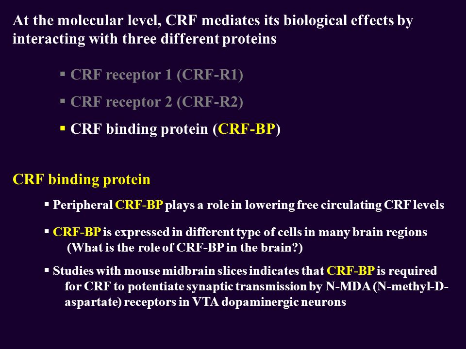 CRF binding protein (CRF-BP)