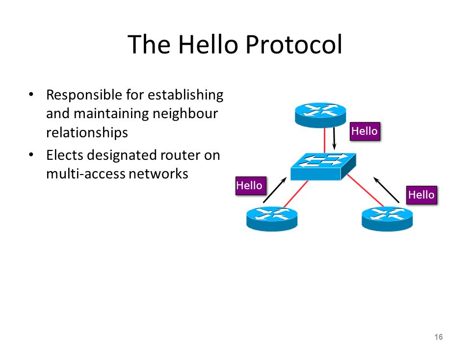 The Hello Protocol Responsible for establishing and maintaining neighbour relationships. Elects designated router on multi-access networks.