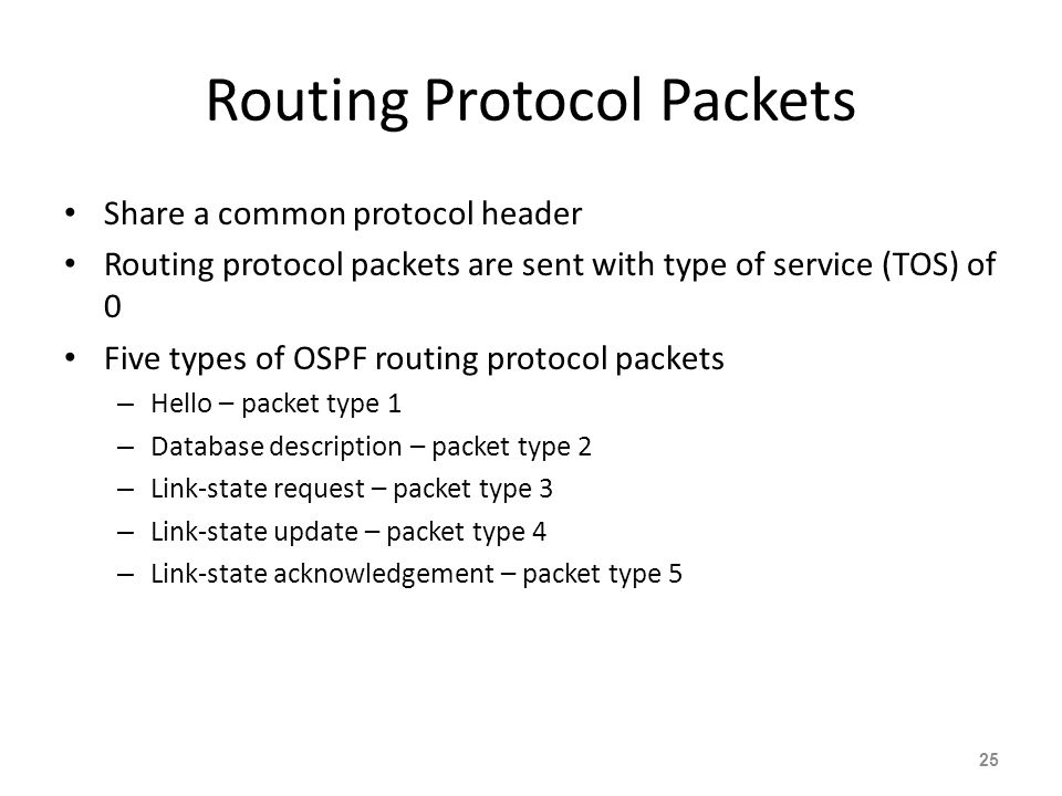 Routing Protocol Packets