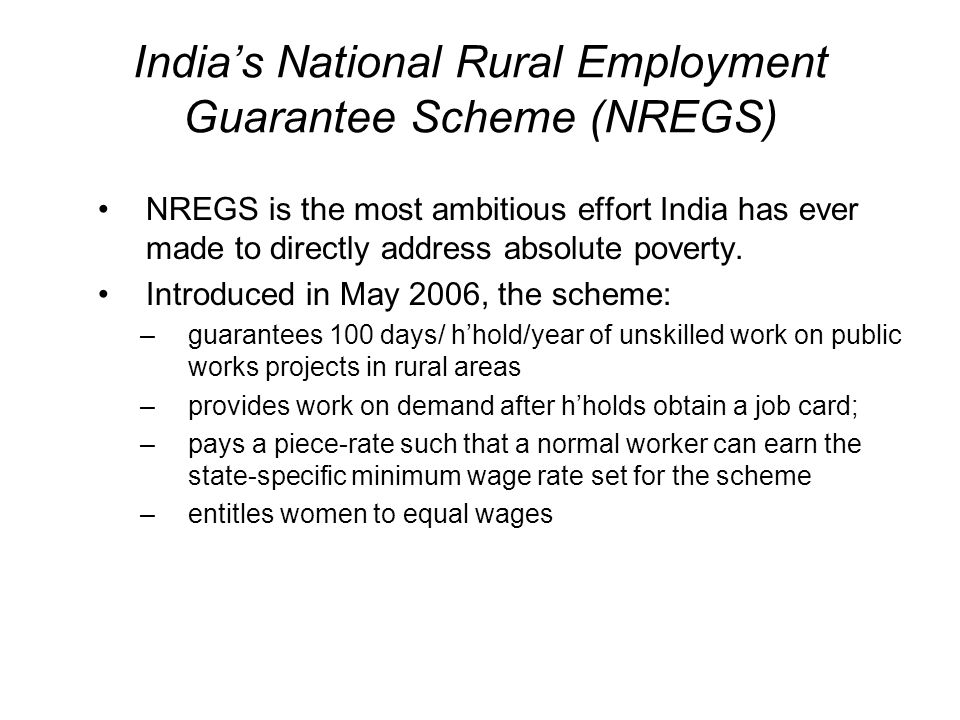 India's National Rural Employment Guarantee Scheme (NREGS)