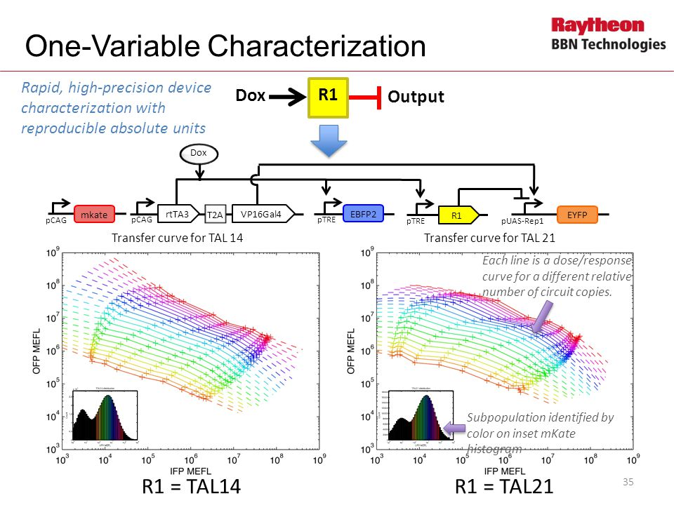 One-Variable Characterization
