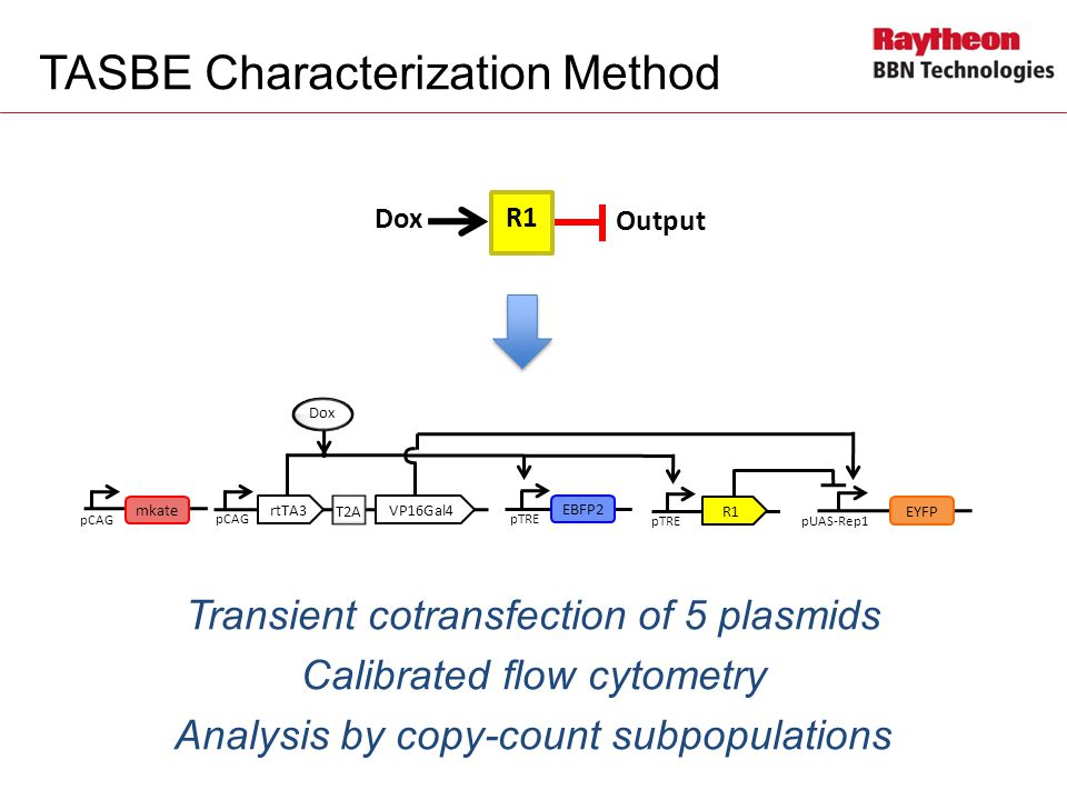 TASBE Characterization Method