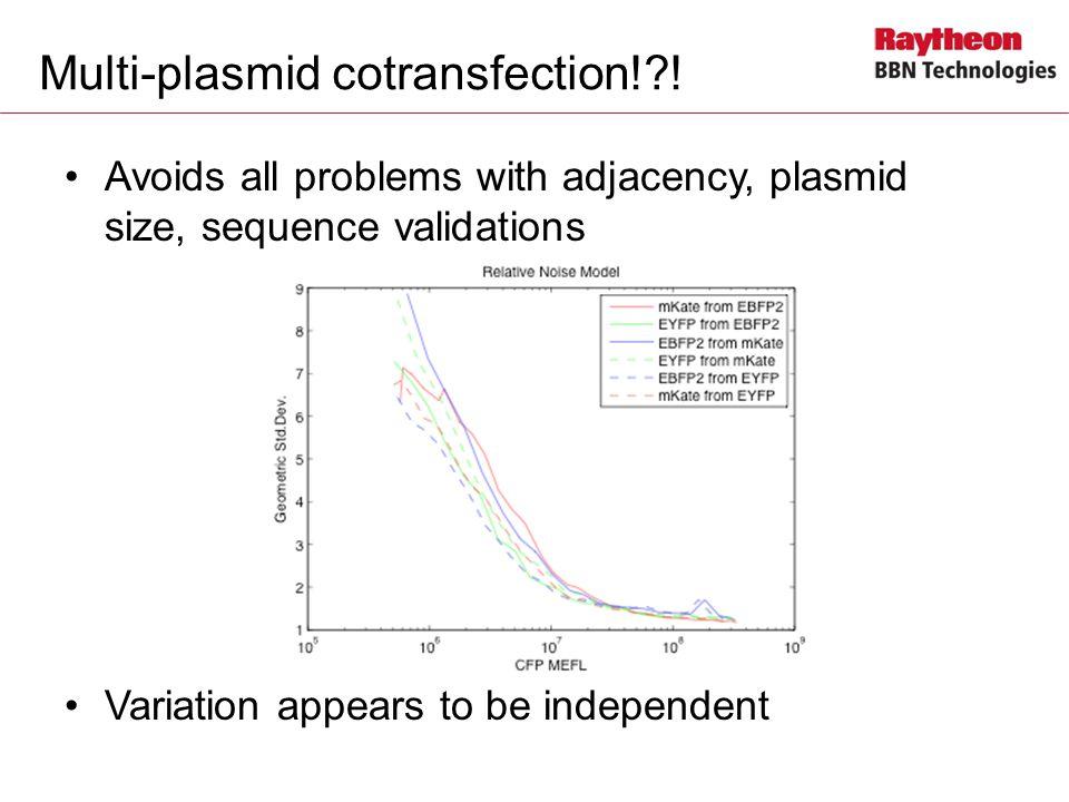 Multi-plasmid cotransfection! !