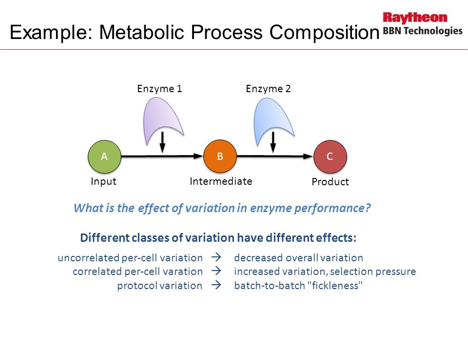 Example: Metabolic Process Composition