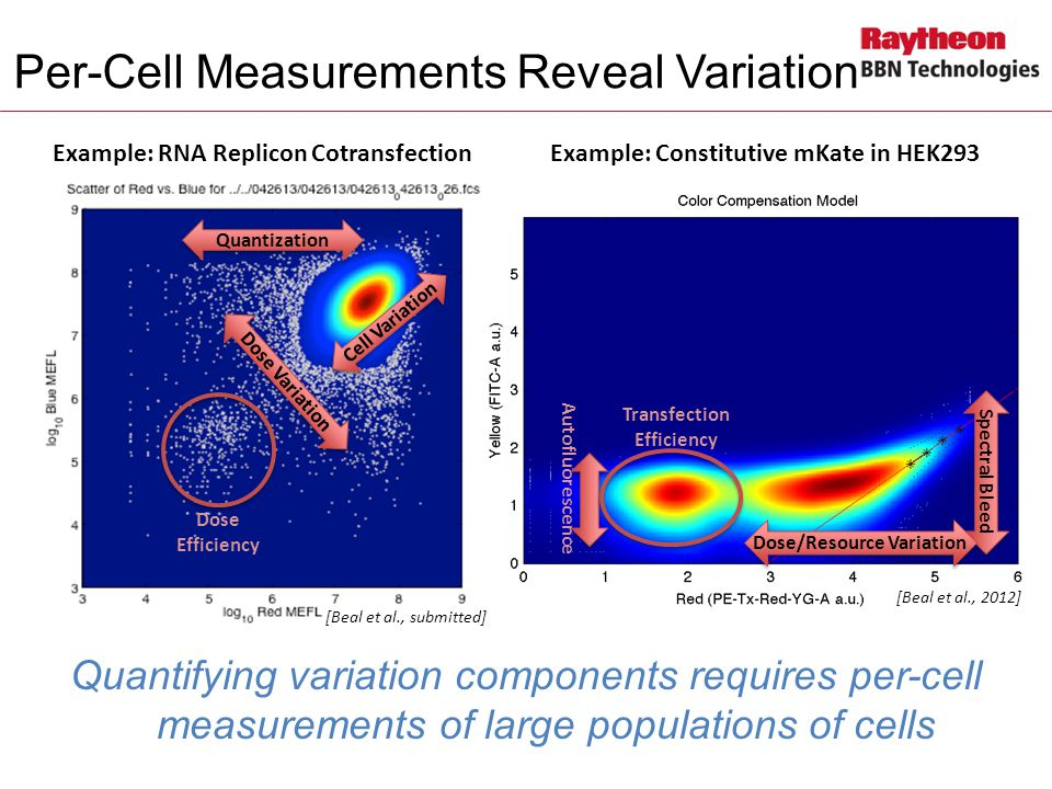 Per-Cell Measurements Reveal Variation