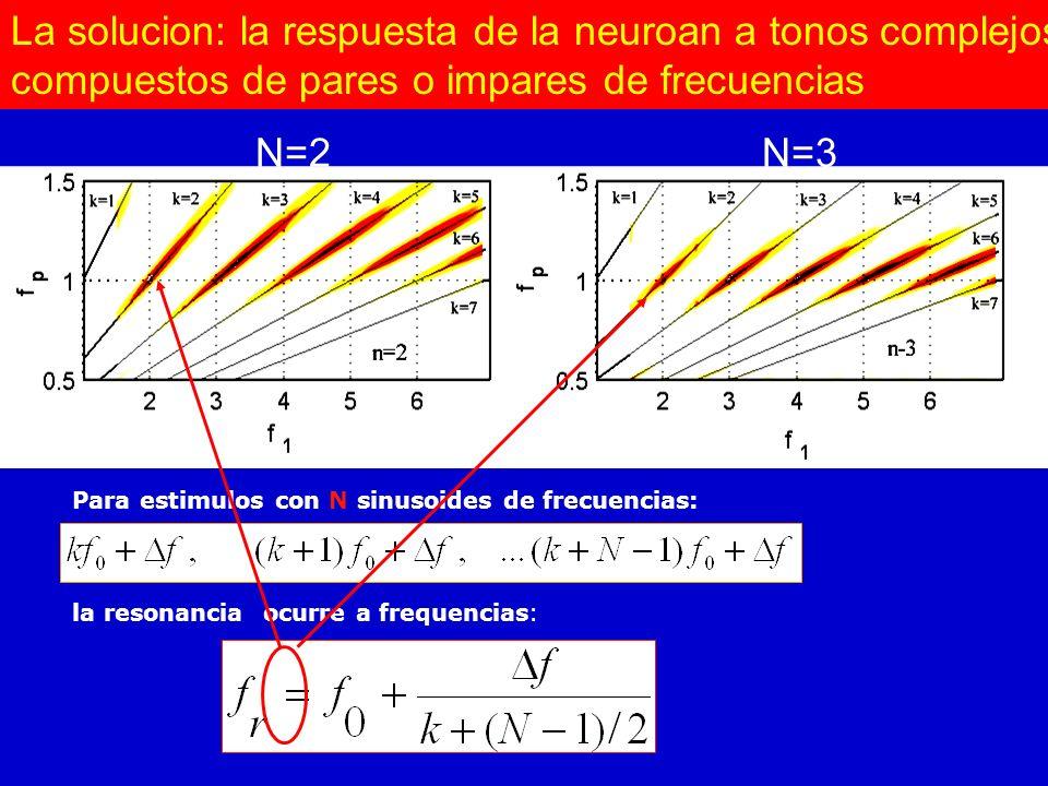 La solucion: la respuesta de la neuroan a tonos complejos compuestos de pares o impares de frecuencias