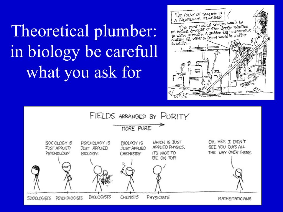 Theoretical plumber: in biology be carefull what you ask for