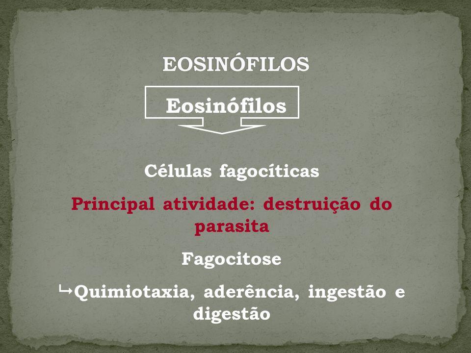 EOSINÓFILOS Eosinófilos Células fagocíticas
