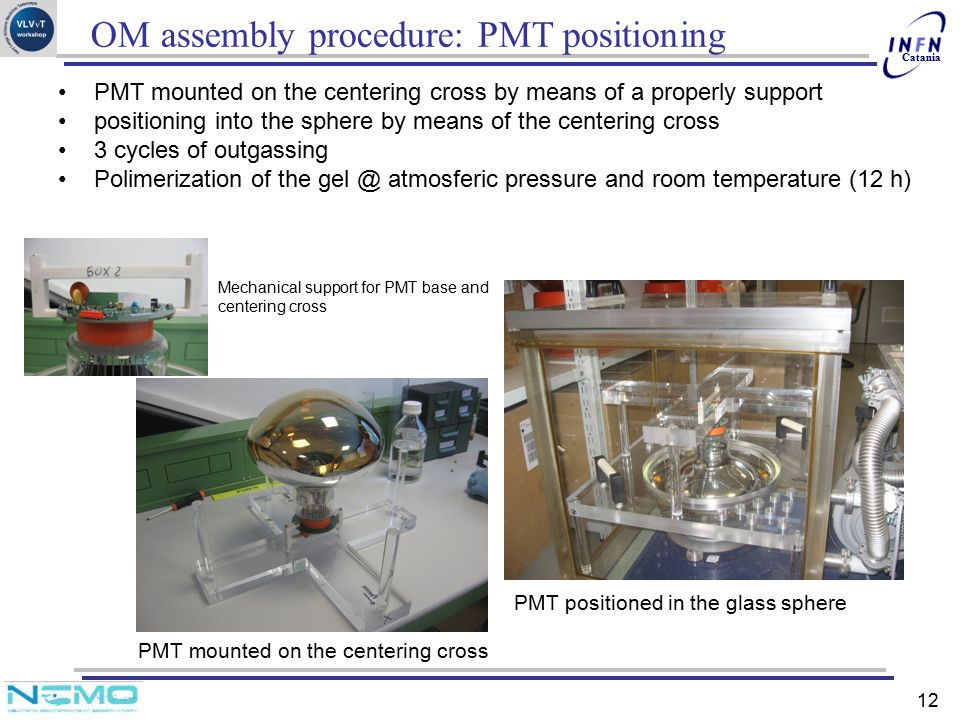 OM assembly procedure: PMT positioning
