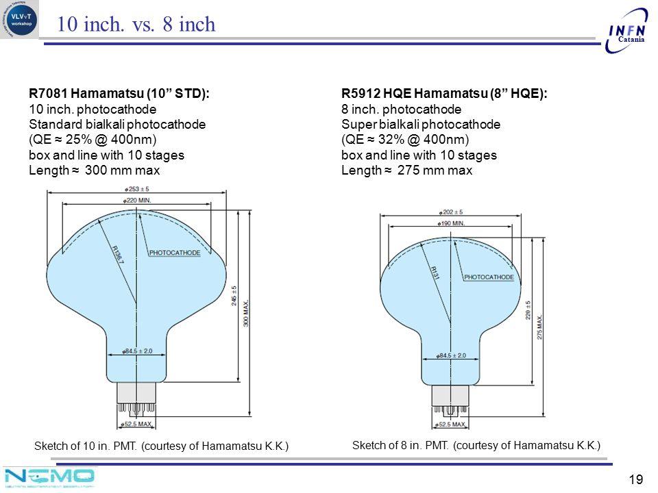 10 inch. vs. 8 inch R7081 Hamamatsu (10 STD): 10 inch. photocathode