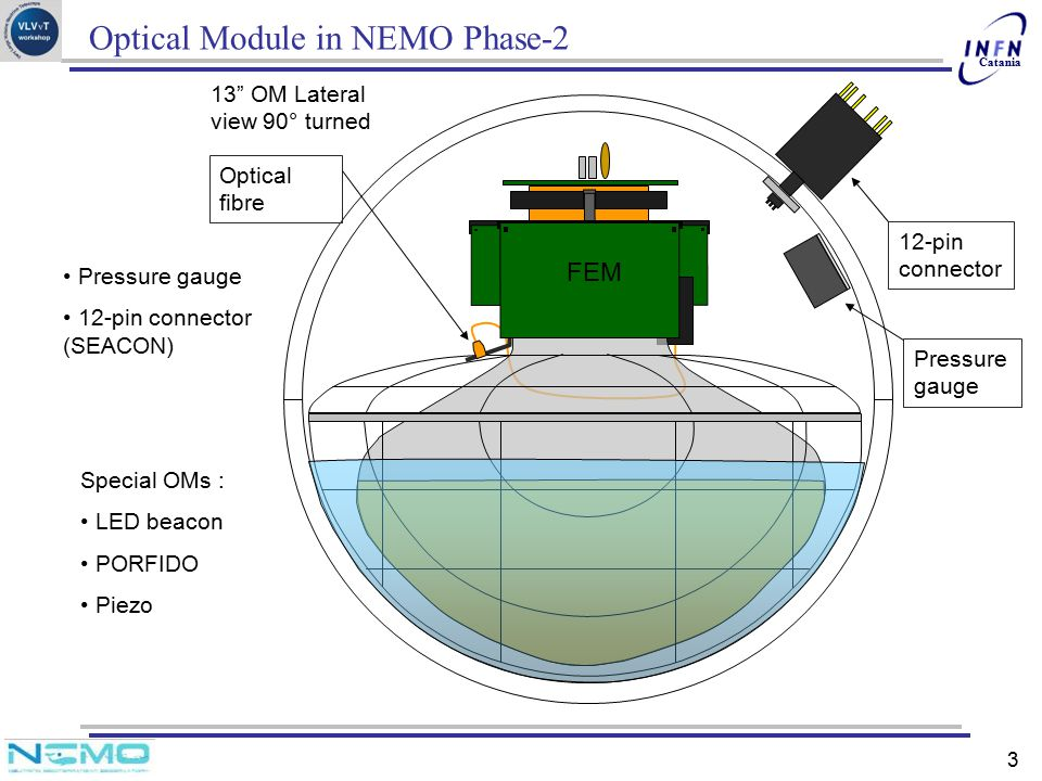 Optical Module in NEMO Phase-2