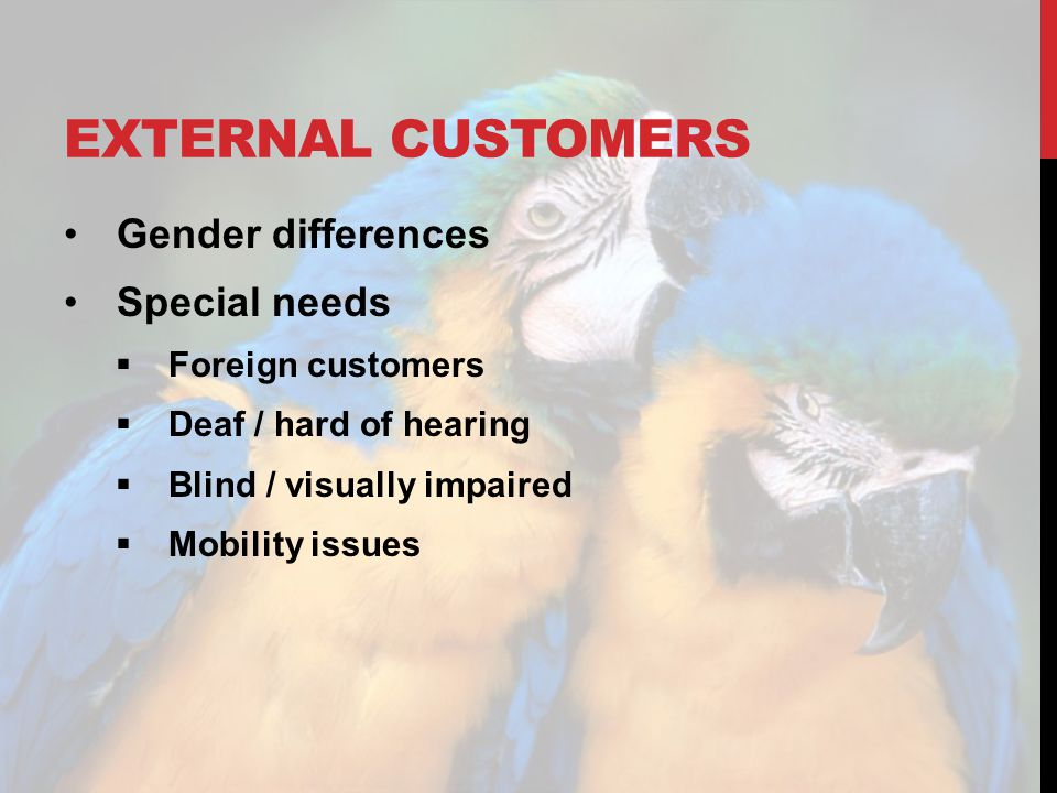 EXTERNAL CUSTOMERS Gender differences Special needs Foreign customers