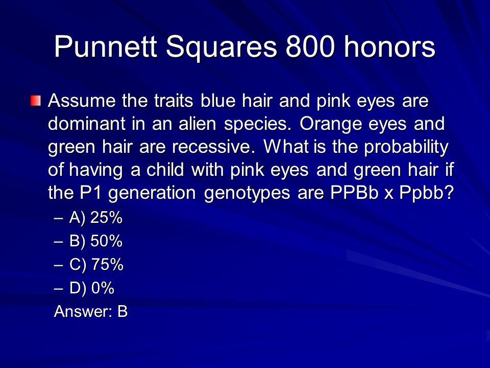 Punnett Squares 800 honors